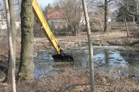 Startschuss für Projekt 706: Naturidyll entsteht!