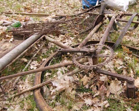 Frühjahrsputz : Viele Schulzendorfer sammelten Müll und allerlei Unrat!