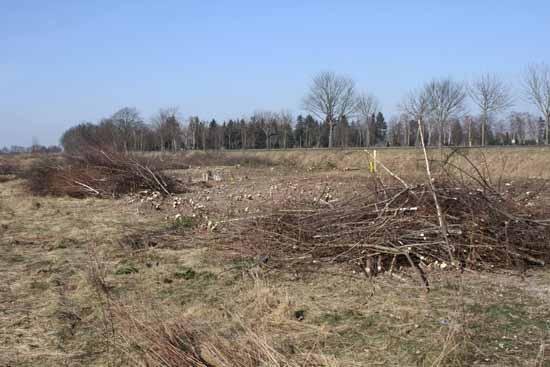 Mühlenschlag: LAUKAT Gruppe will investieren