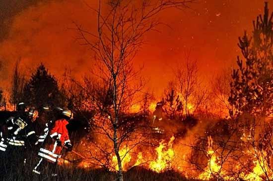 Derzeit ist größte Vorsicht beim Betreten des Waldes geboten, damit so etwas nicht passiert. (Foto: Feuerwehr Schüttdorf)