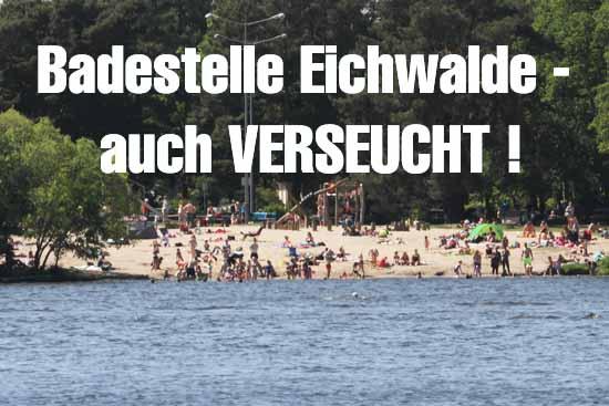 Die Wasserqualität mehrerer Badestellen im Landkreis ist miserabel. (Foto: mwBild)