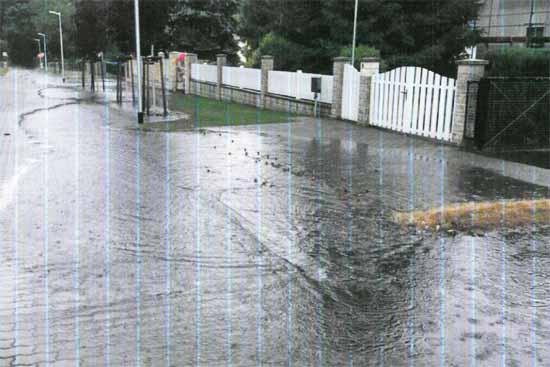 Die Regenentwässerung in der Weimarer Straße ist funktionsuntüchtig. (Foto: Petition)