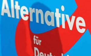 AfD – Erst gewählt, dann abgesprungen