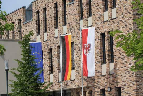 AfD, Bündnis 90 /Die Grünen und FDP hatten allen Grund zum Feiern.