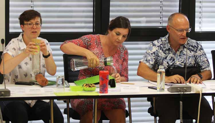 Die Fraktion Bündnis 90/Die Grünen (v.l.): Claudia Stölzel, Michaela Lindovsky, Andreas Körner (Foto: mwBild):