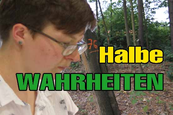 Claudia Stölzels Behauptungen hat Revierförsterin Waachtel widerlegt. (Foto: mwBild)