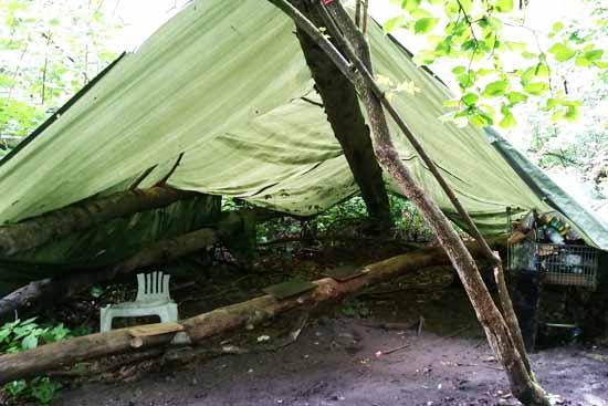 Was macht dieses Zeltlager im Wald am Ortszentrum?