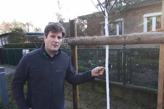 CDU – Appell: Bürger und Rathausmitarbeiter sollen Bäume pflanzen