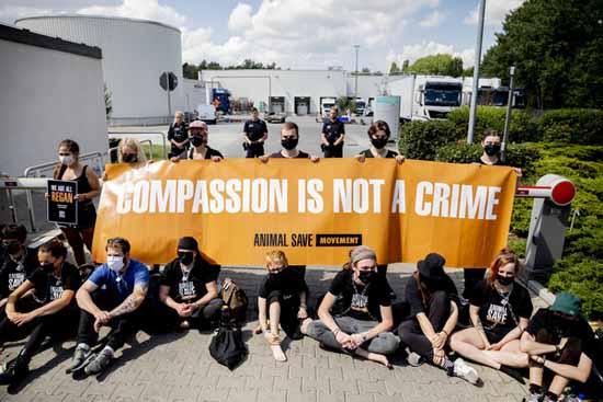 Tierschutzaktivisten blockieren teils angekettet die Einfahrt des Schlachthofs Foto: Christoph Soeder/dpa