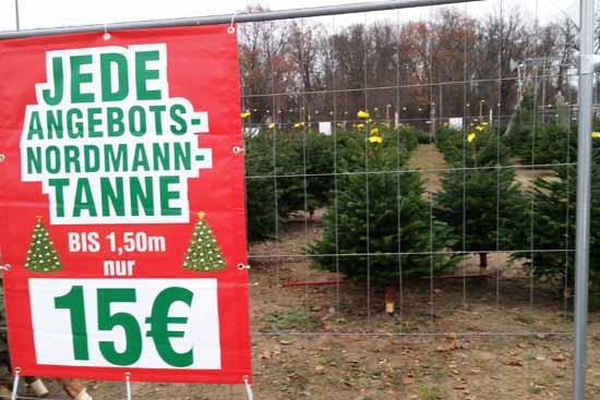 VORSICHT – Mieser Trick beim Weihnachtsbaum Verkauf