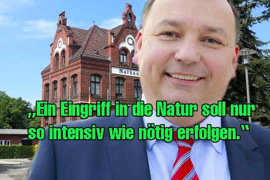 Schulstandort: Wald-Protestler drohen Rathaus mit Zoff (Teil 1)