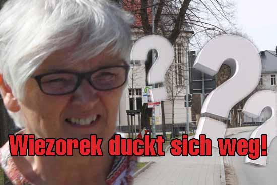 Wizorek