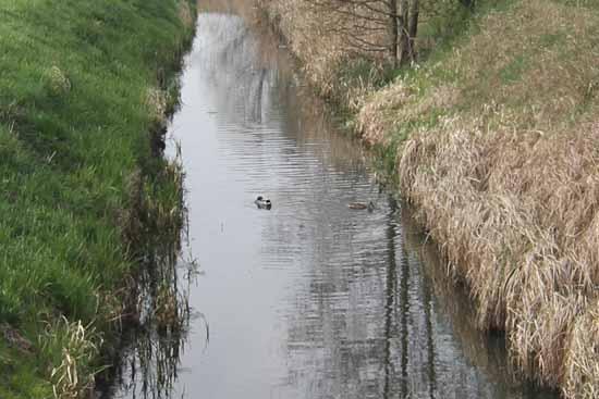 """Prof. Jonas Reif: """"Wasser halten, halten und nochmals halten"""""""
