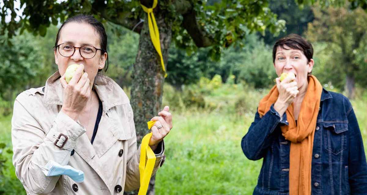 Der Schulzendorfer sagt, was es mit gelben Bändern an Bäumen auf sich hat